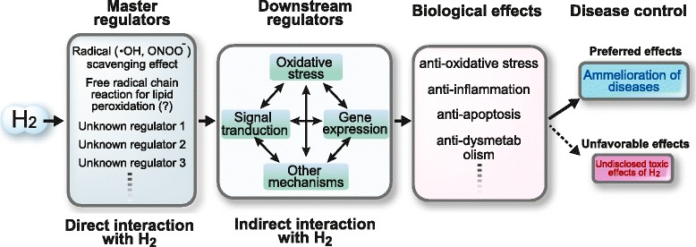 Hidrojenden etkilenen alanlar